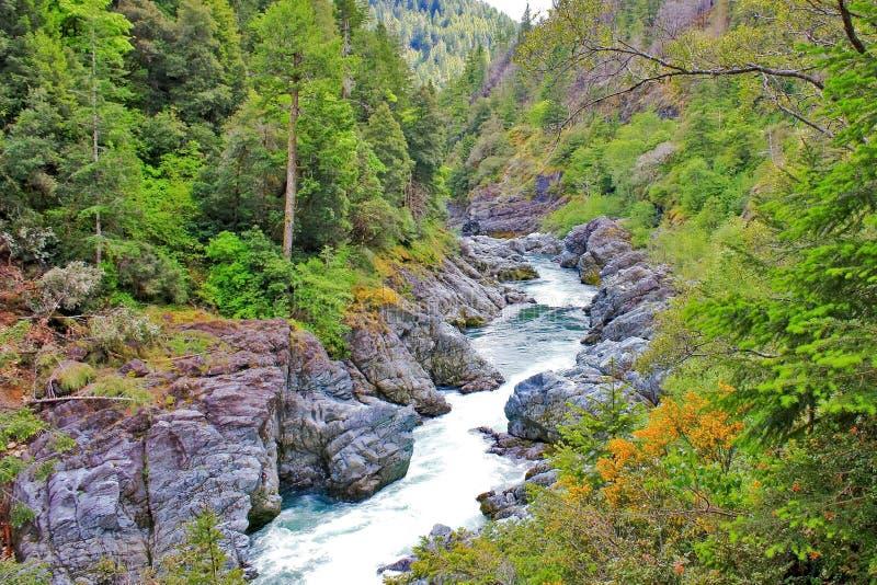 Ein rauer Fluss in den Bergen stockfoto