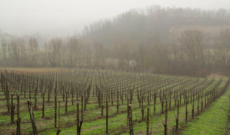 Ein regnerischer Tag stockfotos