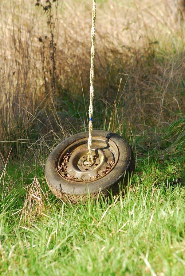 Ein Reifenschwingen, das von einem Baum hängt stockfotos