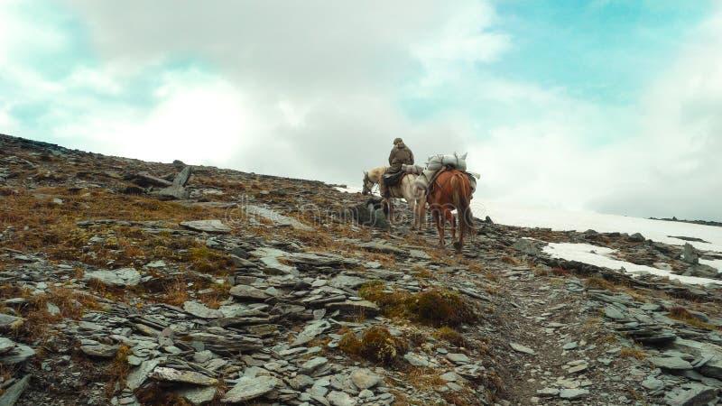 Ein Reiter mit zwei Pferden geht entlang den Weg zu den Bergen stockfotografie