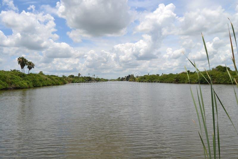 Ein Resaca in Rio Grande Valley Texas stockfotos