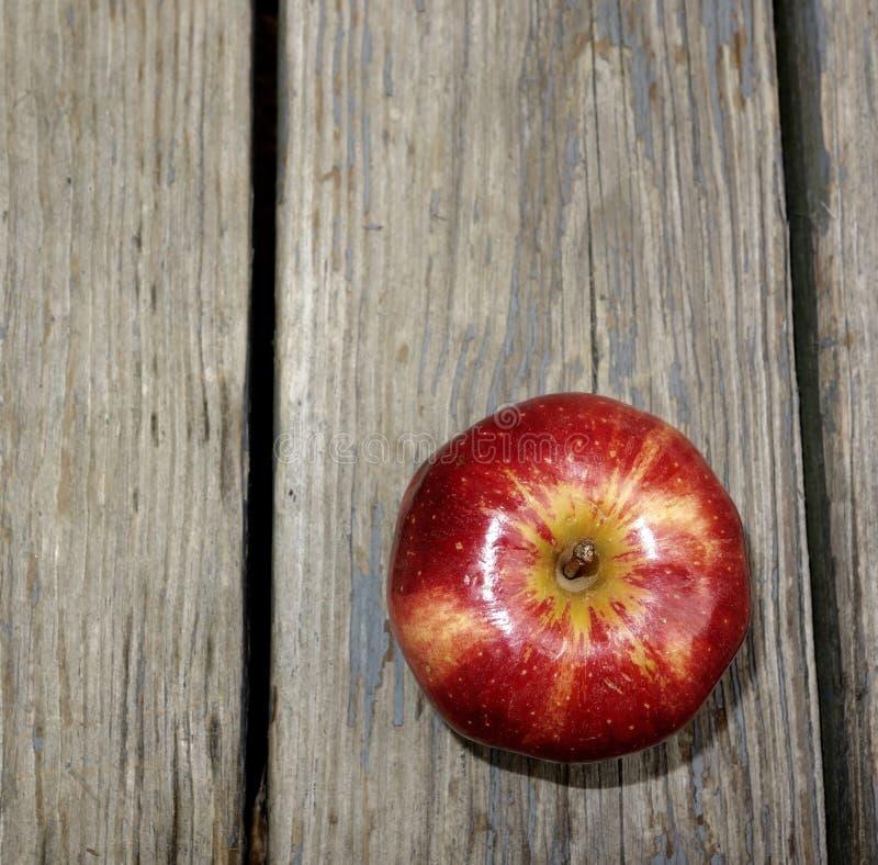 Ein roter Apple lizenzfreie stockbilder