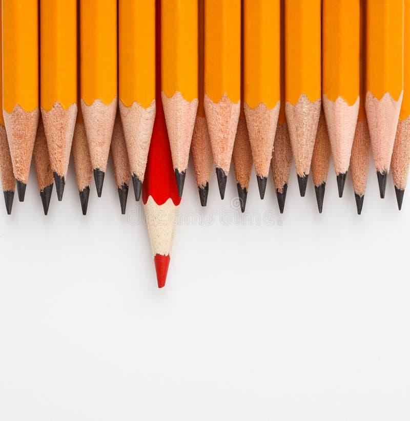 Ein roter Bleistift in der Gruppe von den ähnlichen lizenzfreies stockfoto