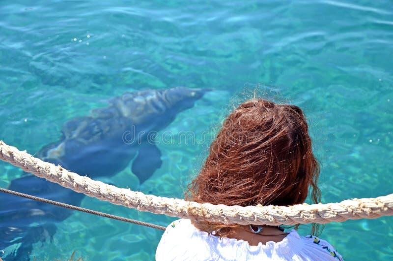 Ein rothaariges Mädchen sitzt auf einem Pier und passt einen freien Delphin auf, unter Wasser im Roten Meer zu schwimmen Ein sonn lizenzfreies stockfoto