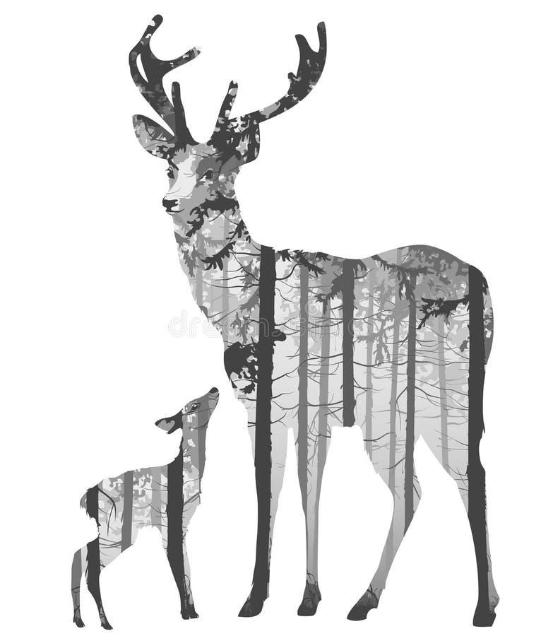 Ein Rotwild mit einem kleinen Rotwild lizenzfreie abbildung