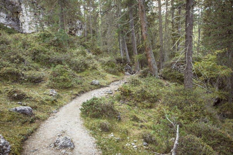 Ein ruhiger Gebirgsweg in Valle-Di Funes in die italienischen Dolomit lang gehen stockbild