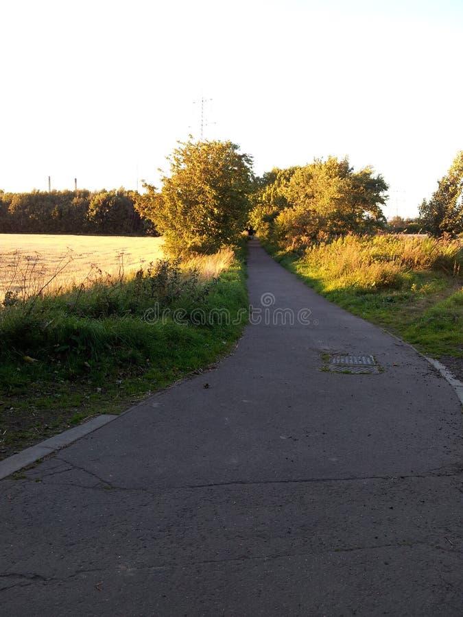 Ein ruhiger Sommernachtweg in der Landschaft lizenzfreie stockfotografie