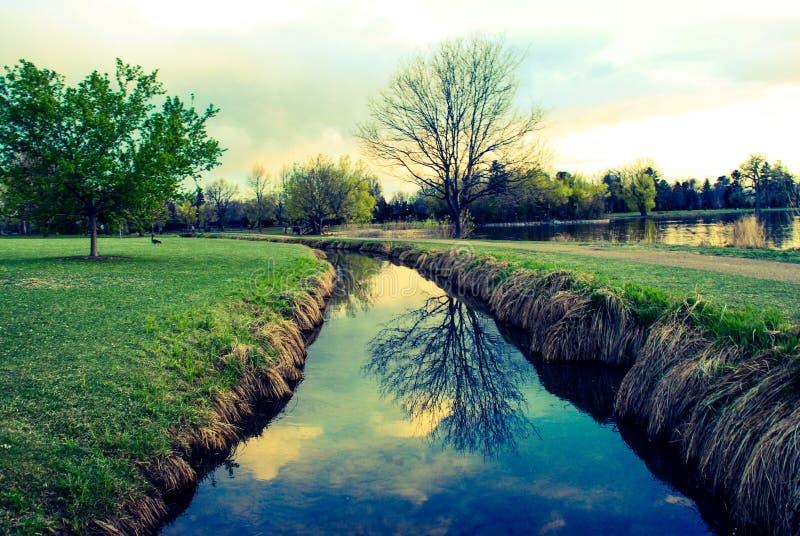 Ein ruhiger Wasser-Nebenfluss stockbild