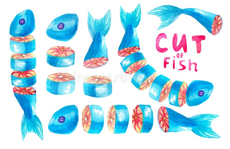 Ein Sammlungssatz St?cke rote Fische schnitt Einzelne St?cke, Steaks, St?ckl?gen folgend, in einem Halbrund horizontal stockbilder