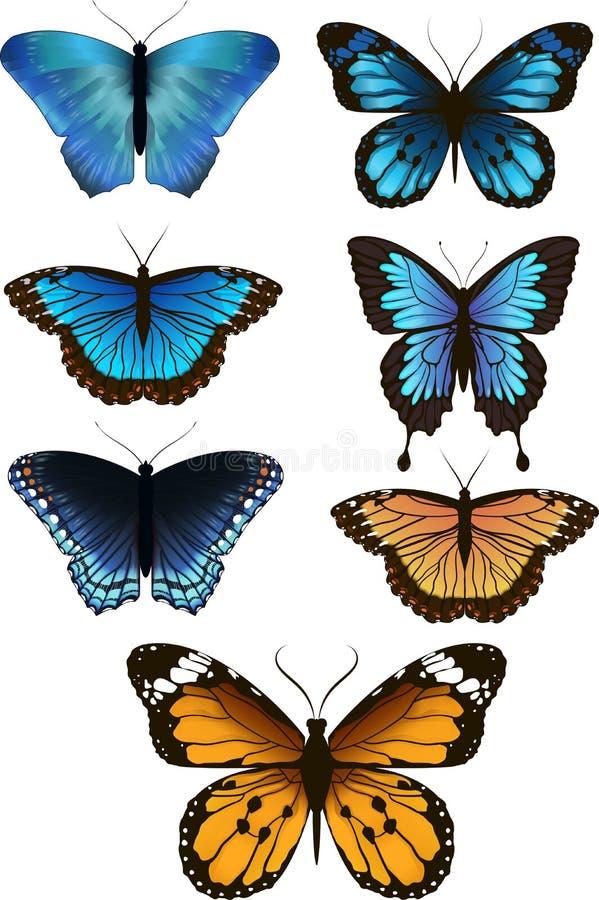 Ein Satz schöne Schmetterlinge, Vektor stockfoto