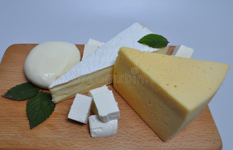 Ein Satz verschiedene Arten des Käses - Mozzarella, Feta, Briekäse, niederländisch lizenzfreie stockbilder
