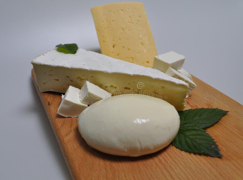 Ein Satz verschiedene Arten des Käses - Mozzarella, Feta, Briekäse, niederländisch stockfoto