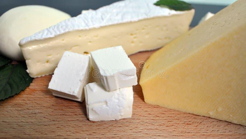 Ein Satz verschiedene Arten des Käses - Mozzarella, Feta, Briekäse, niederländisch stockbild