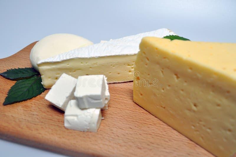Ein Satz verschiedene Arten des Käses - Mozzarella, Feta, Briekäse, niederländisch stockbilder