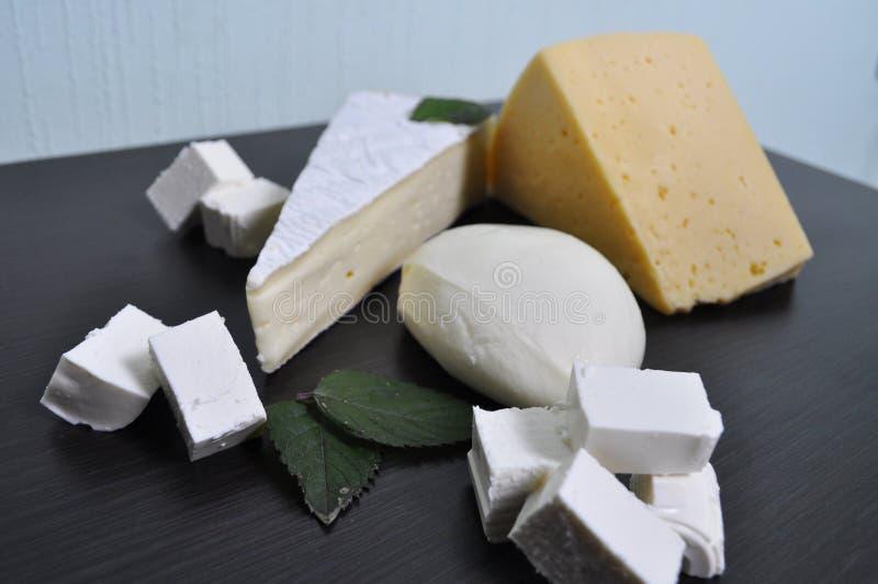 Ein Satz verschiedene Arten des Käses - Mozzarella, Feta, Briekäse, niederländisch stockfotografie