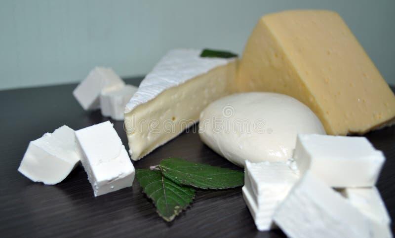 Ein Satz verschiedene Arten des Käses - Mozzarella, Feta, Briekäse, niederländisch lizenzfreies stockbild