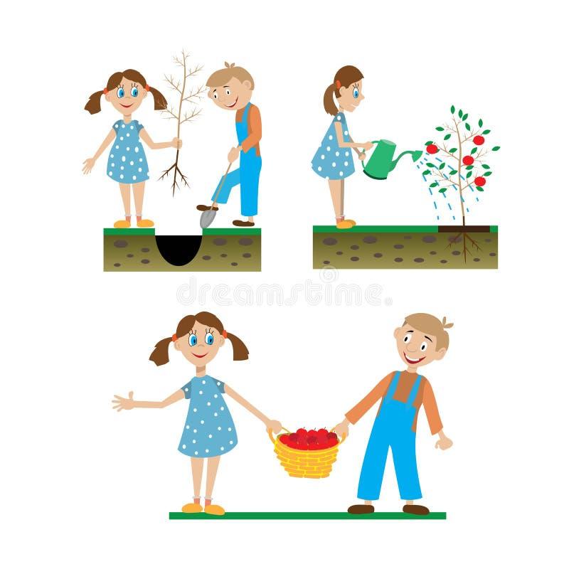Ein Satz Zeichnungen von den Kindern, die im Garten arbeiten lizenzfreie abbildung
