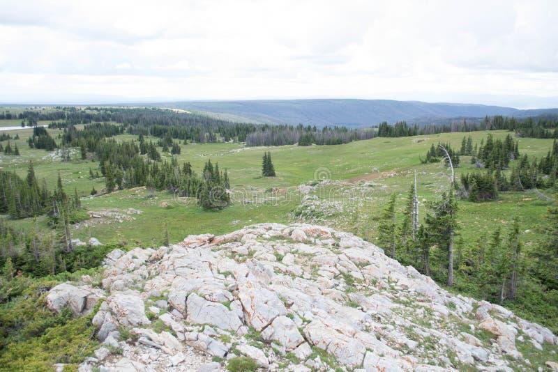 Ein sceanic Überblick über Libby Flats in den Snowy-Strecken-Bergen, Wyoming lizenzfreies stockbild