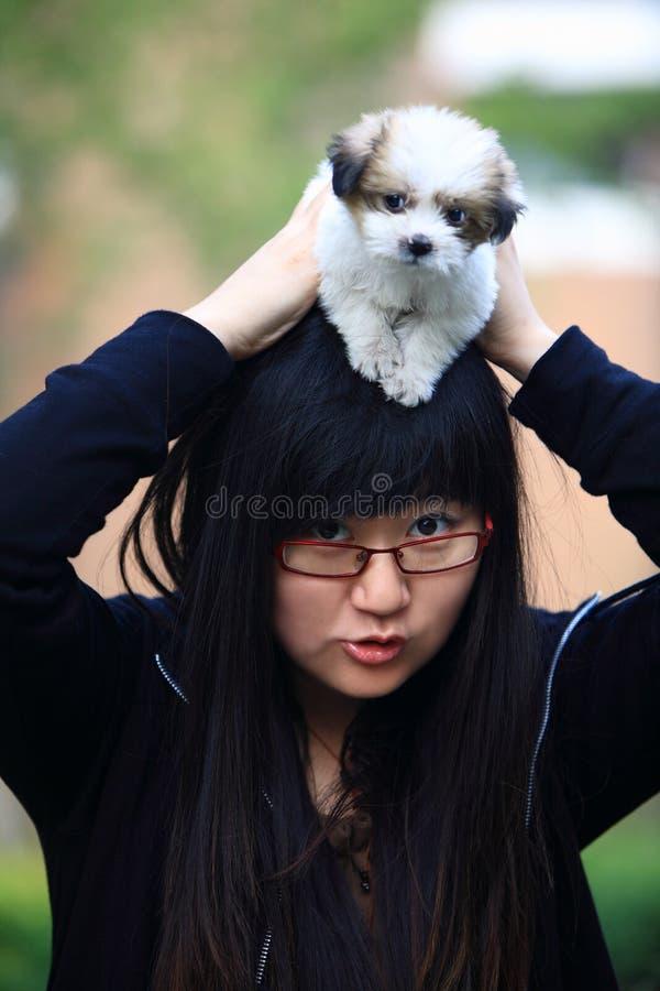 Ein Schätzchenhund und ein junges Mädchen stockfotografie
