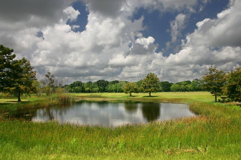 Ein schöner Park stockbilder