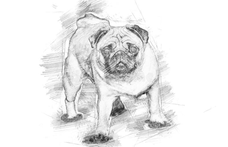 Ein schöner Pug steht in der Wiese - skizzieren Sie Art lizenzfreie abbildung