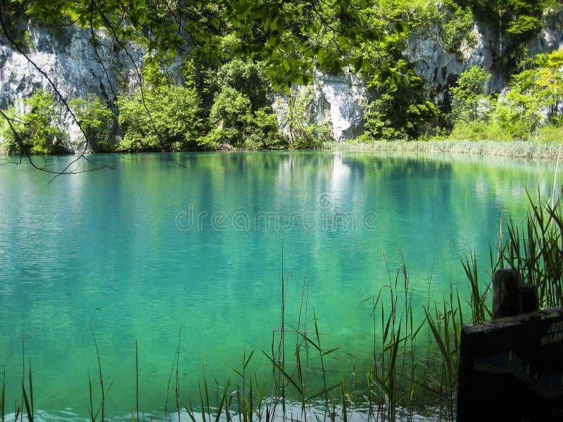 ein schöner See im Wald mit grünem Wasser stockfoto