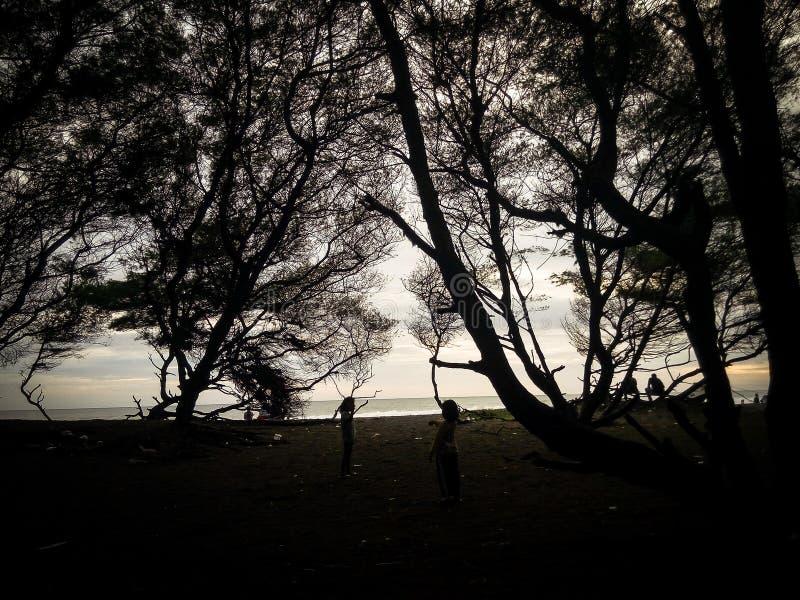 Ein schöner Sonnenuntergang in Strand Goa Cemara stockbilder