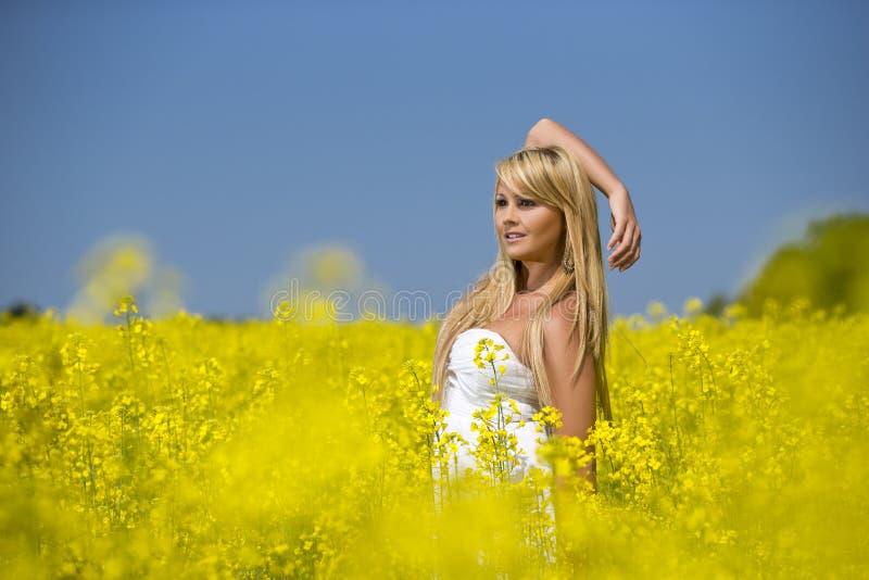 Ein schönes Mädchen, das auf einem Gebiet von gelben Blumen aufwirft stockfoto