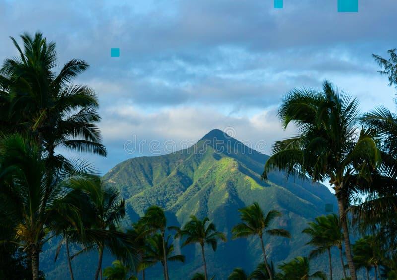 Ein schönes Maui Mountain View lizenzfreie stockfotografie