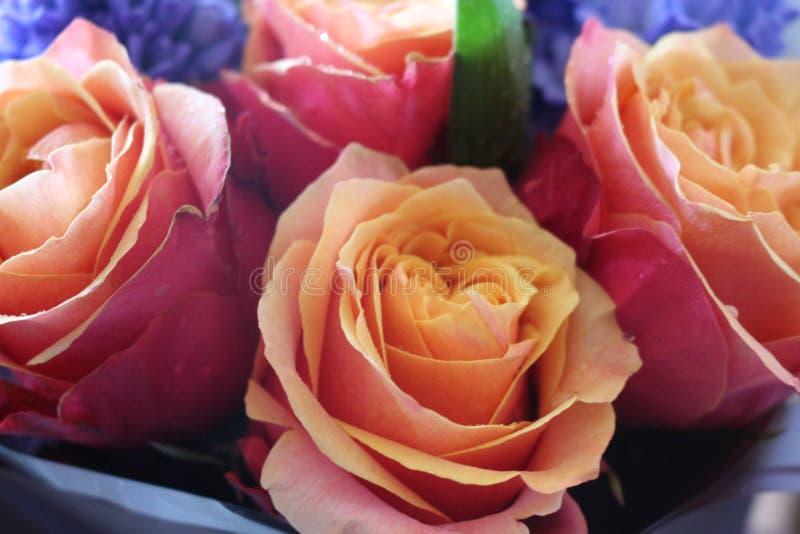 Ein sch?ner Blumenstrau? von Rosen und von Hyazinthen appelliert jeder Frau Sein k?niglicher Duft erobert jedes lizenzfreie stockfotografie