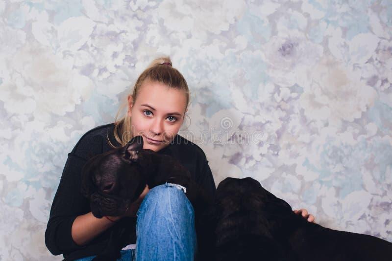 Ein sch?nes junges M?dchen sitzt und h?lt viel kleinen Welpen eines Hundes der franz?sischen Bulldogge stockfoto