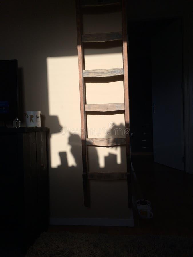 Ein Schatten einer Katze in der Sonne stockbild