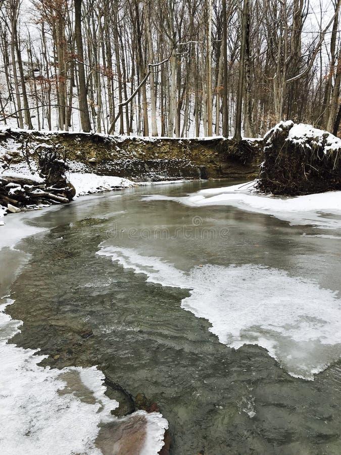 Ein schneebedeckter Blick in Cleveland Metroparks - dem Parma, Ohio lizenzfreie stockfotos