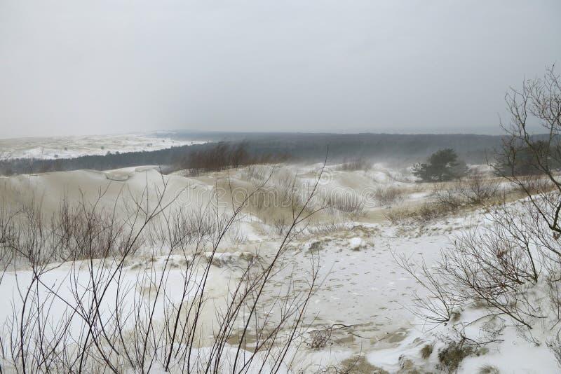 Ein Schneefleck in den weißen Sanddünen lizenzfreies stockbild