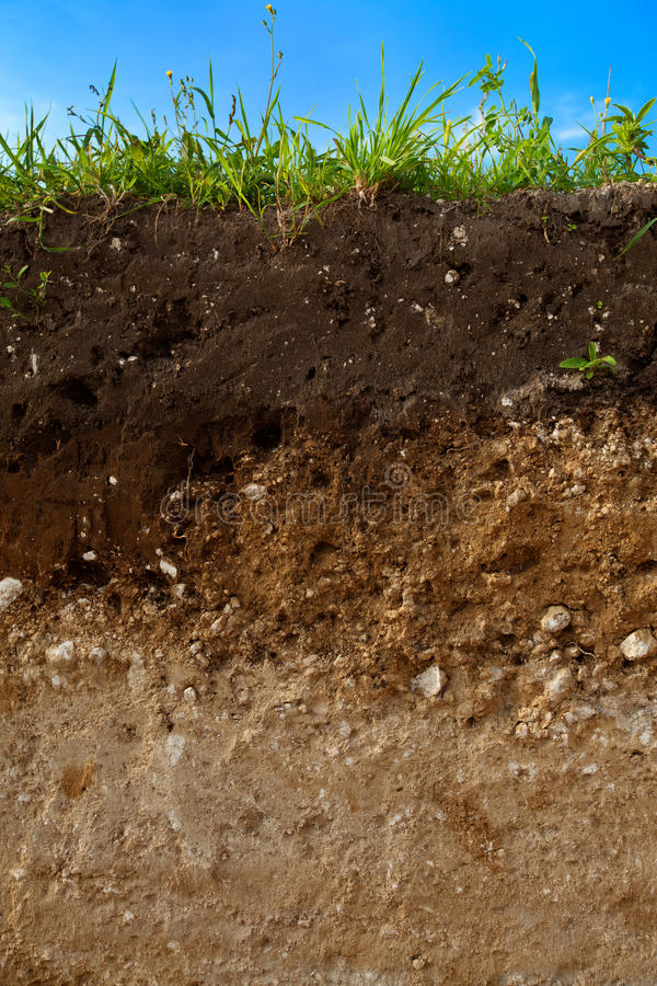 Ein Schnitt des Bodens stockbild