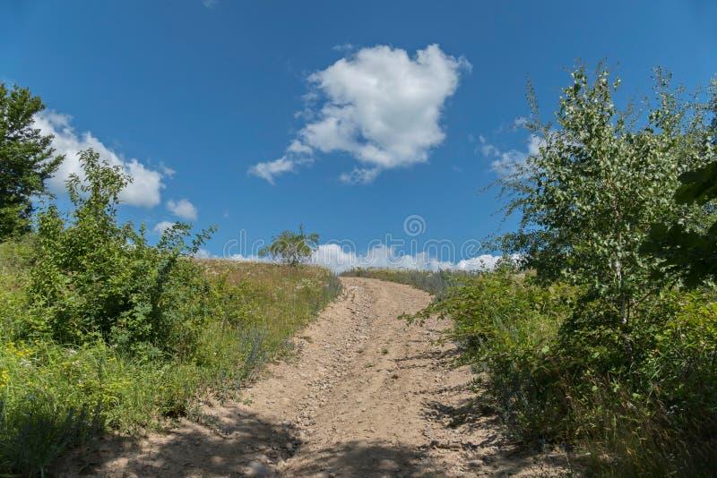 Ein Schotterweg, der einen Hügel unter grünen Büschen und Bäumen gegen einen hellen blauen Himmel mit weißen Wolken führt lizenzfreies stockfoto