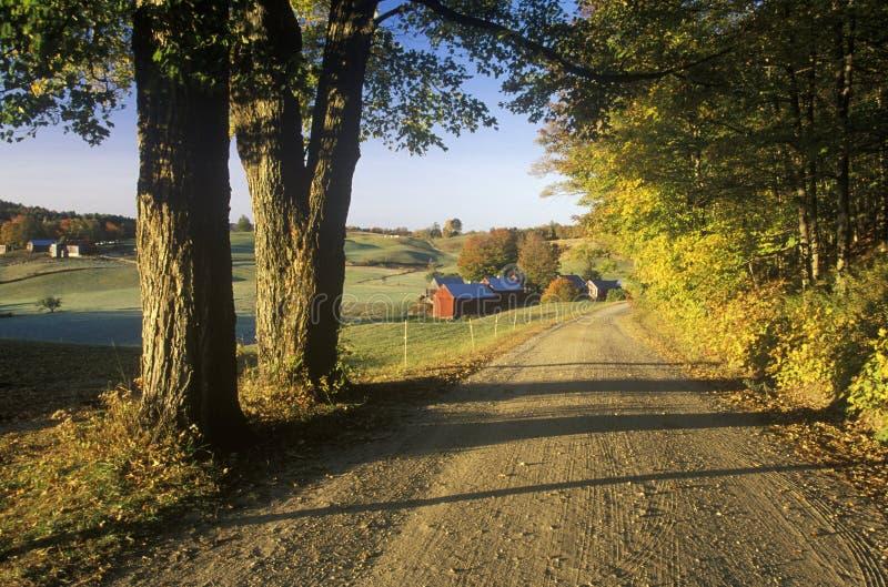 Ein Schotterweg, der zu Jenne Farm in Vermont führt lizenzfreie stockbilder