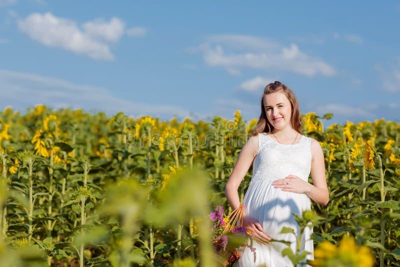 Ein schwangeres Mädchen im Kleid steht mit einer gelben Sonnenblume auf dem Gebiet Schwangere Frau, die ihren Bauch gegen den Hin lizenzfreies stockbild