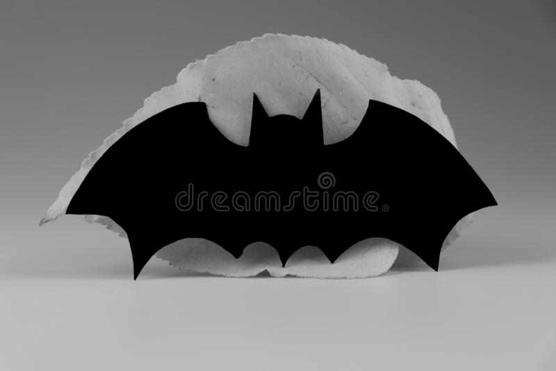 Ein Schwarzweiss-Schläger auf grauem Hintergrund Normalerweise Dekoration auf Halloween-Partei stockbilder