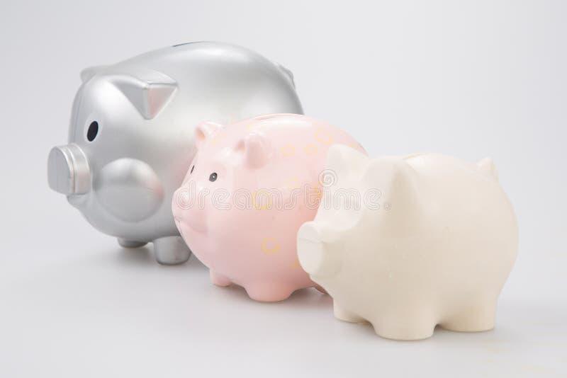 ein Schwein der Seitenansicht drei der Sparschweinfamilie lizenzfreie stockfotos