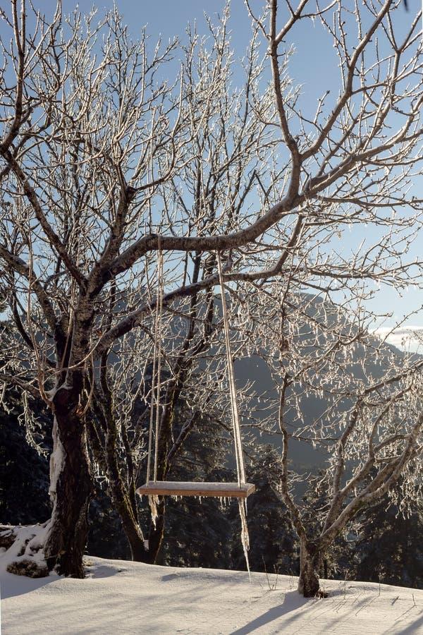 Download Ein Schwingen Im Wald An Einem Winterabend Stockbild - Bild von bedeutung, berg: 106802625