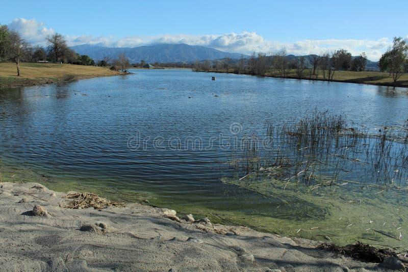 Ein See in regionalem Park Prado, Chino, San Bernardino, Kalifornien lizenzfreies stockbild