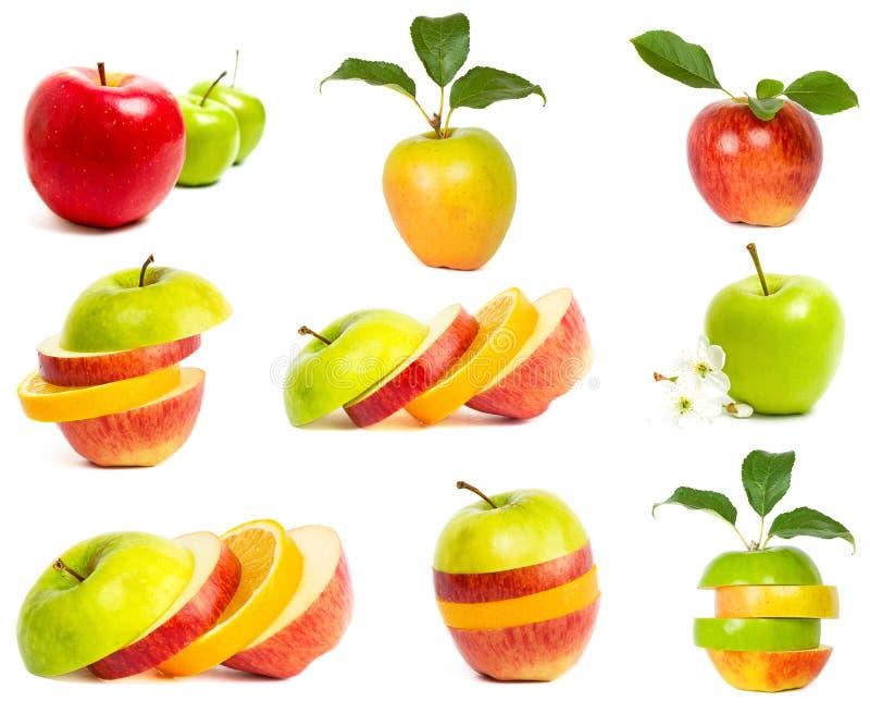 Ein Set frische Äpfel lizenzfreie stockfotografie