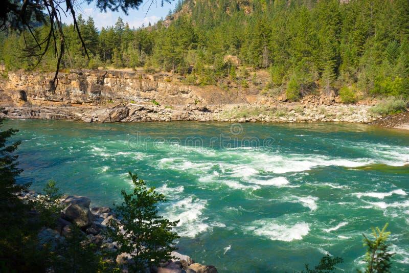 Ein sich schnell bewegender Fluss am Glazial- Nationalpark stockfotos