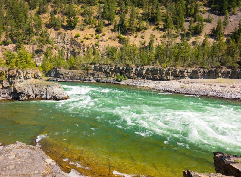 Ein sich schnell bewegender Fluss am Glazial- Nationalpark lizenzfreie stockfotos
