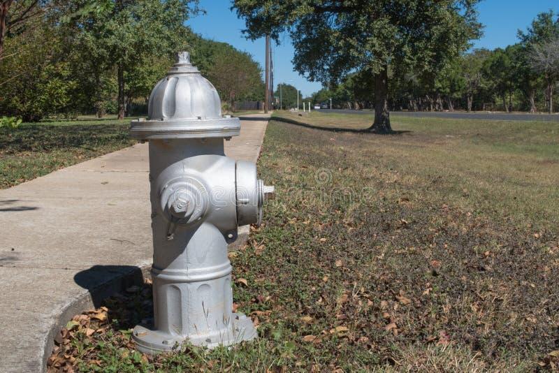 Ein silberner Hydrant und Bäume stockfotografie