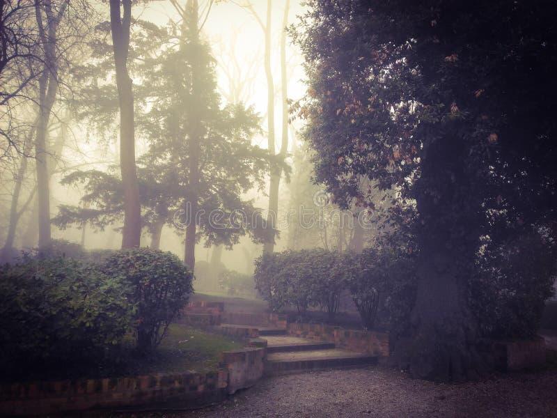 Ein Smog im Park lizenzfreie stockfotografie