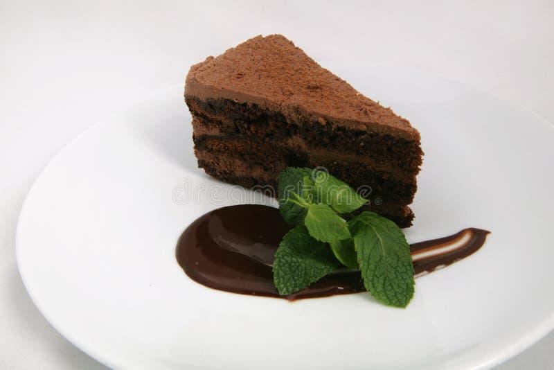 Ein St?ck des Schokoladenkuchens mit Schokoladensoße und tadellosem Blatt lizenzfreie stockbilder