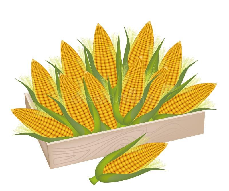 Ein Stapel des frischen Mais in der Holzkiste vektor abbildung