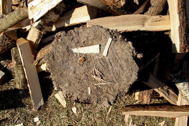 Ein Stapel des gehackten Holzes Ges?gter Baum splitter Brennholzschnittb?ume brennholz lizenzfreie stockbilder